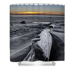 Driftwood In The Sand Shower Curtain by Debra and Dave Vanderlaan