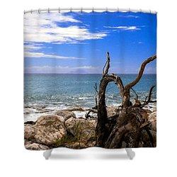 Driftwood Island Shower Curtain by Karen Wiles