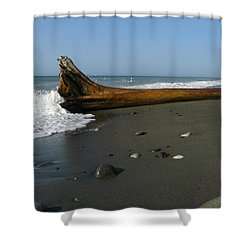Driftwood Shower Curtain by Jane Ford