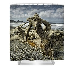 Driftwood On Rialto Beach In Olympic National Park No. 144 Shower Curtain by Randall Nyhof