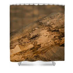 Driftwood Shower Curtain by Sebastian Musial