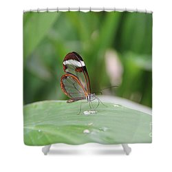 Drinking Water Shower Curtain