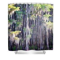 Dripping Moss Shower Curtain