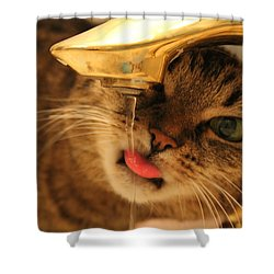 Drips On The Tongue Shower Curtain by Catie Canetti