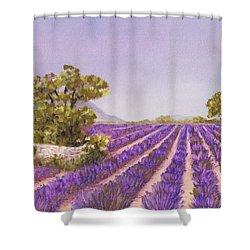 Drome Provence Shower Curtain by Anastasiya Malakhova