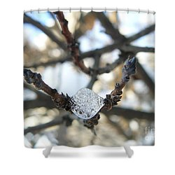 Shower Curtain featuring the photograph Drop Of Ice by Jane Ford
