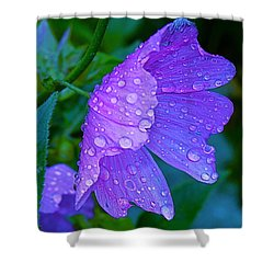 Drops Of Delight Shower Curtain by Rita Mueller