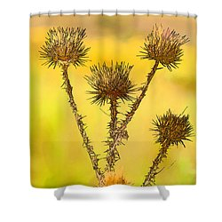 Dry Brown Thistle Shower Curtain