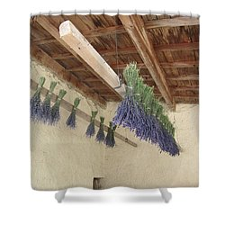 Drying Lavender Shower Curtain by Pema Hou