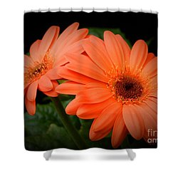 Duality Shower Curtain