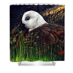 Duck At Dusk Shower Curtain