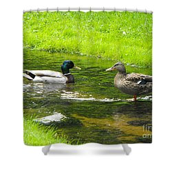 Duck Couple Shower Curtain