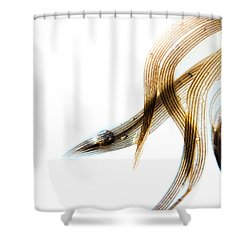 Duck Feather And Water Drops Shower Curtain by Bob Orsillo