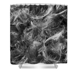 Duck Feathers Shower Curtain