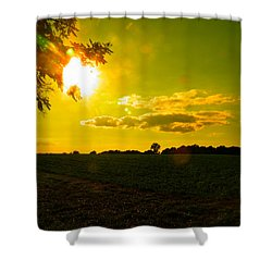 Duck Flying Low Cloud 2 Shower Curtain by Nick Kirby