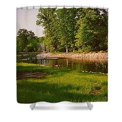 Duck Pond With Water Fountain Shower Curtain by Amazing Photographs AKA Christian Wilson