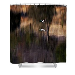 Duck Scape 2 Shower Curtain
