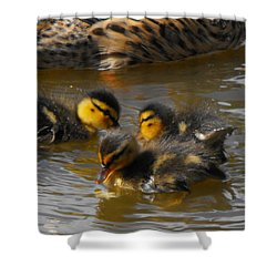 Duckling Splash Shower Curtain
