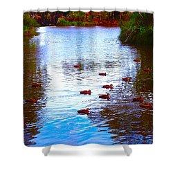 Ducks  Shower Curtain by Mark Blauhoefer