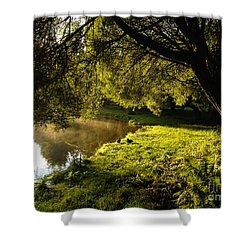 Ducks Of The Dawn Shower Curtain