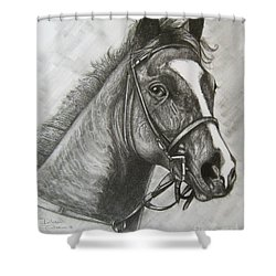 Shower Curtain featuring the drawing Dullahan by Patrice Torrillo