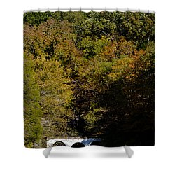 Dunbar Cave And Swan Lake Shower Curtain