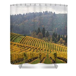 Dundee Oregon Vineyards Scenic Panorama Shower Curtain by Jit Lim