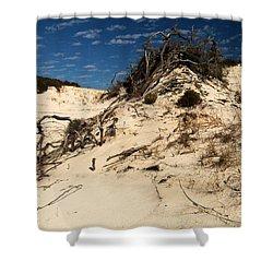 Dune Glue Shower Curtain by Adam Jewell