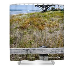 Dune Grass Shower Curtain by Les Cunliffe