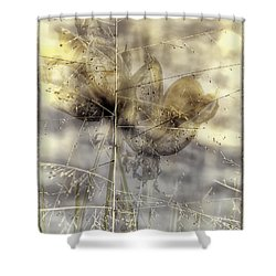 Dune Grass On Yucca Shower Curtain