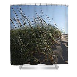 Dune Grass Shower Curtain by Tara Lynn