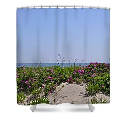 Dune Roses Shower Curtain