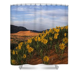 Dunes In Bloom Shower Curtain