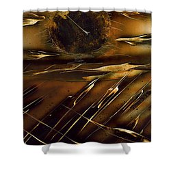 Shower Curtain featuring the painting Dunes by Jason Girard