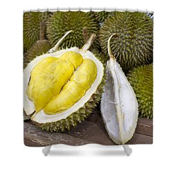Durian 2 Shower Curtain