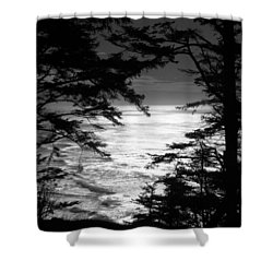 Shower Curtain featuring the photograph Dusk On The Ocean by Katie Wing Vigil