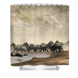 Shower Curtain featuring the photograph Dusty Crossing by Liz Leyden