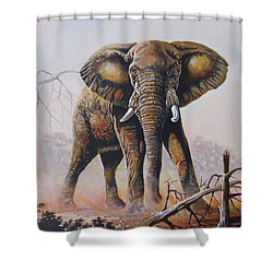 Shower Curtain featuring the painting Dusty Jumbo by Anthony Mwangi