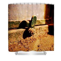 Dusty Window Shower Curtain by Richard Reeve