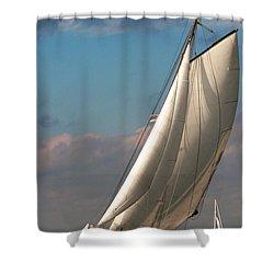 Dutch Delight Shower Curtain