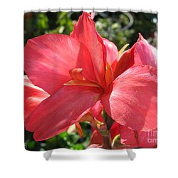 Shower Curtain featuring the photograph Dwarf Canna Lily Named Shining Pink by J McCombie