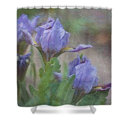 Shower Curtain featuring the photograph Dwarf Iris With Texture by Patti Deters