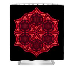 Dying Amaryllis IIi Flower Mandala Shower Curtain