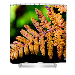 Dying Beauty Shower Curtain by Tap On Photo