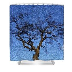 Dynamic Dawn Shower Curtain