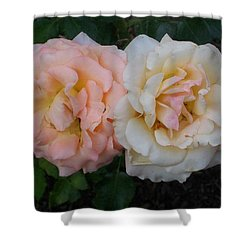 Dynamic Duo Shower Curtain by Jewel Hengen