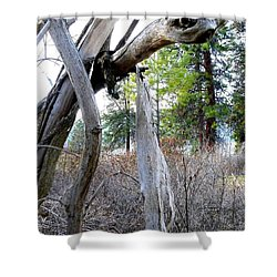 E T Shower Curtain by Will Borden