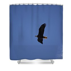 Eagle 1 Shower Curtain
