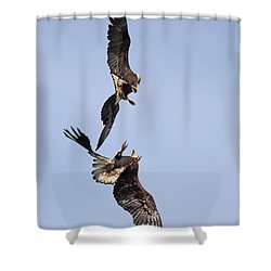 Eagle Ballet Shower Curtain