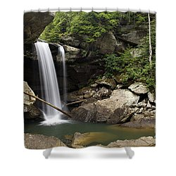 Eagle Falls - D002751 Shower Curtain by Daniel Dempster